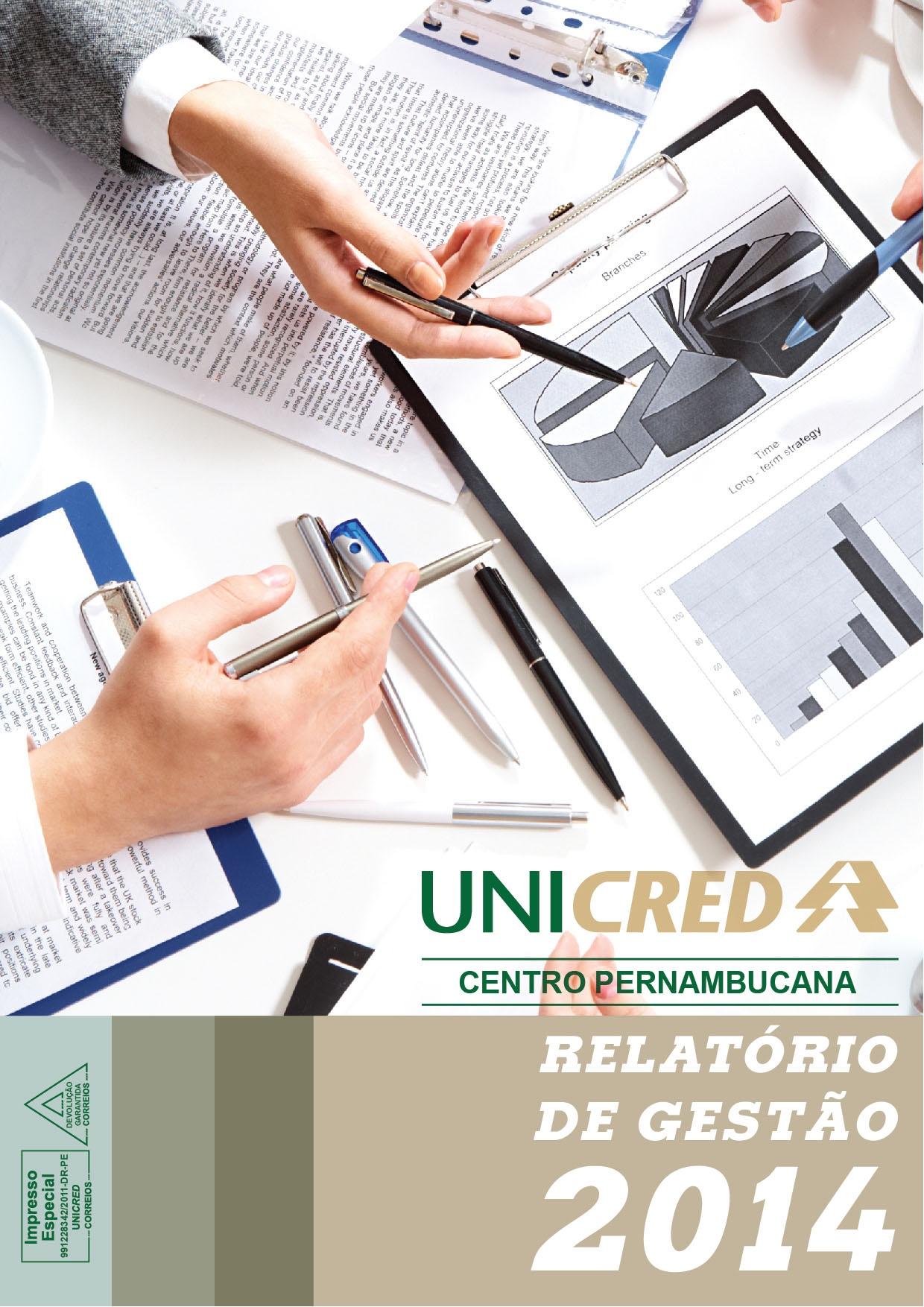 RELATÓRIO DE GESTAO 2013